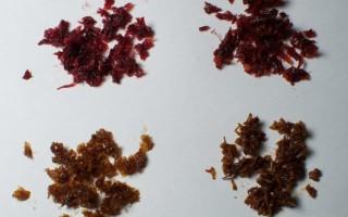 Просто и быстро подобрать ароматизаторы для кальянного табака у надежного и проверенного поставщика