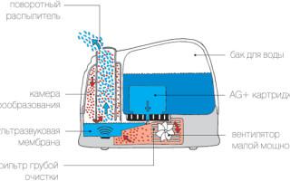 Принцип работы увлажнителя воздуха, нюансы эксплуатации