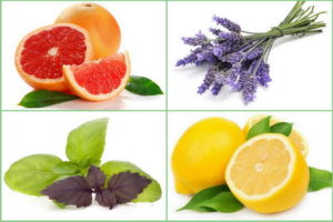 ароматы для поднятия тонуса