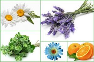 ароматы для расслабления